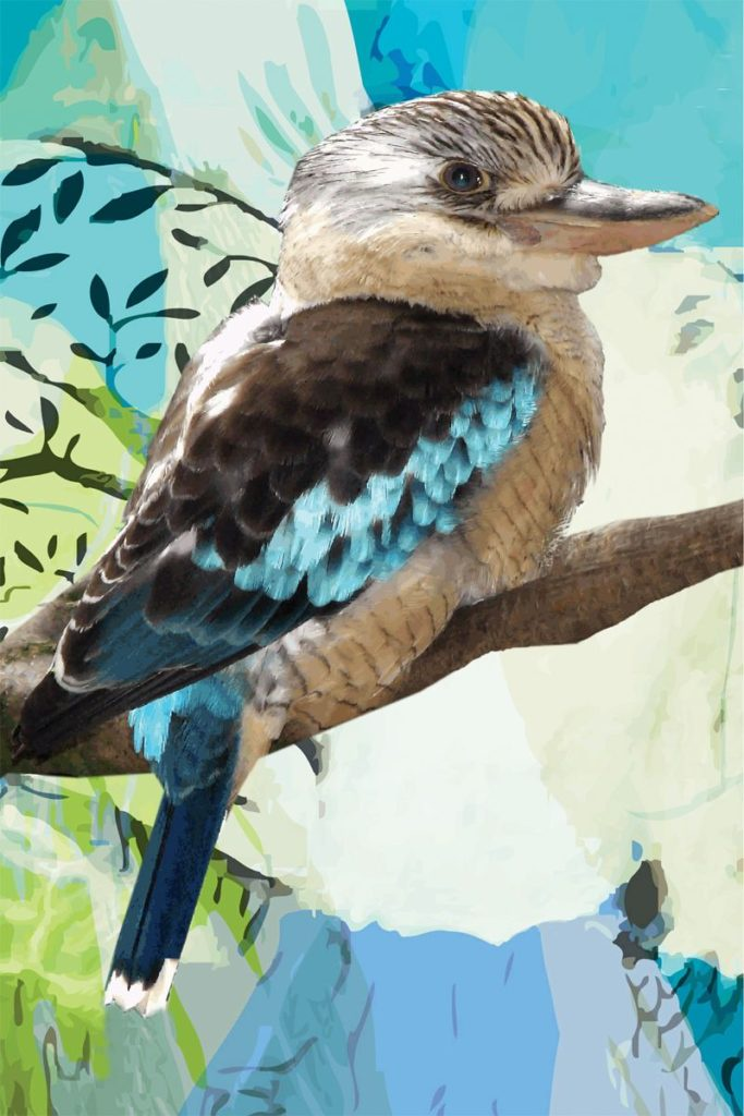 Tea Towel - Kookaburra