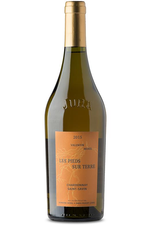Morel Saint Savin Chardonnay