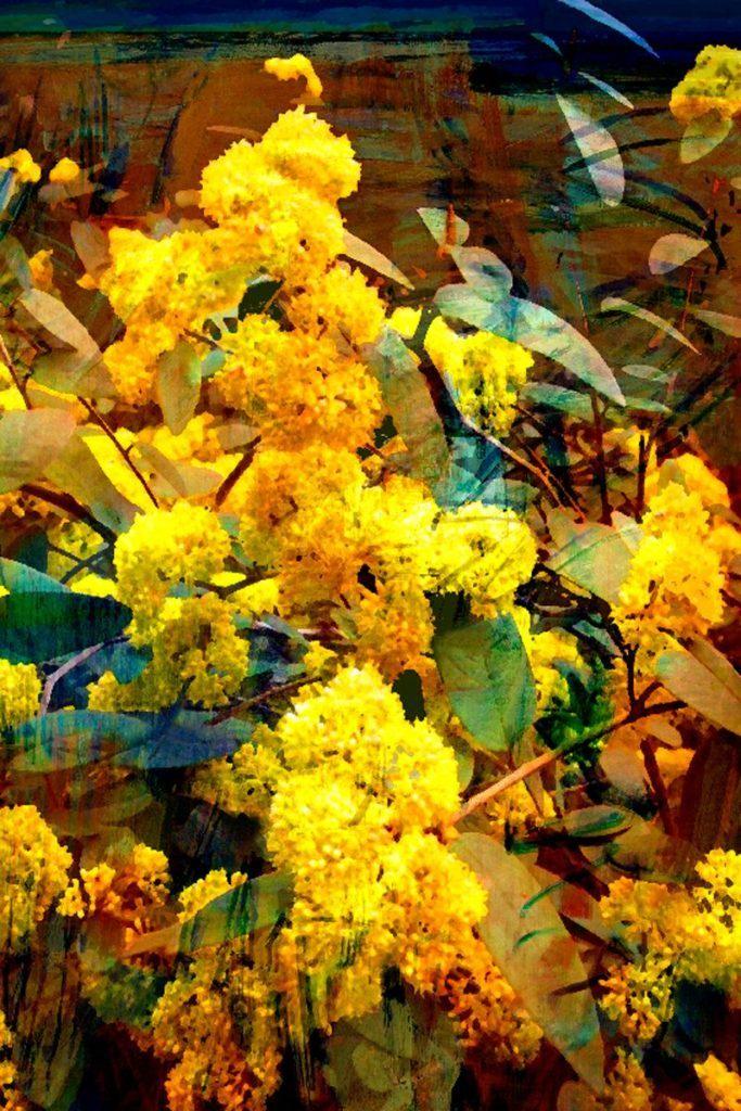 Tea Towel - Golden Wattle